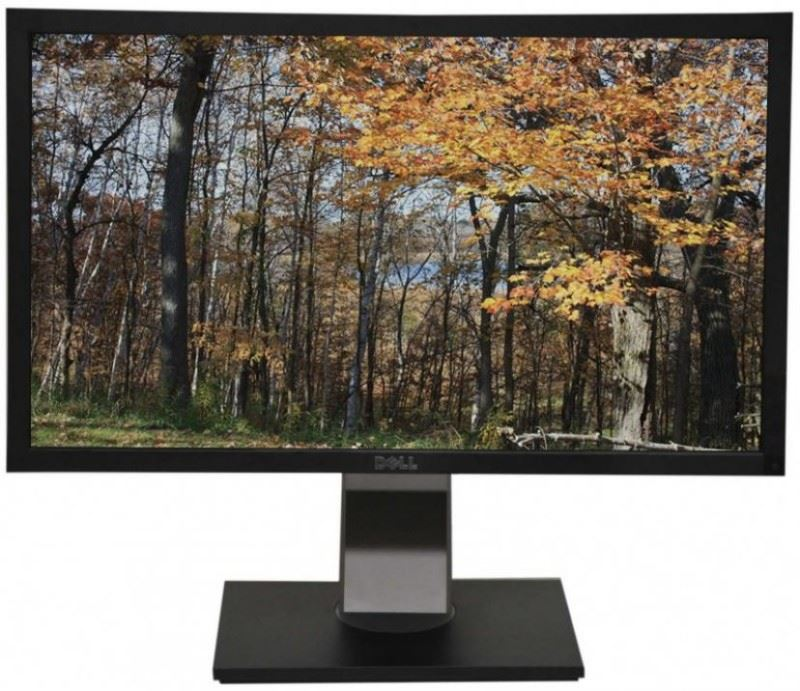 Dell Professional P2411hb – 8576